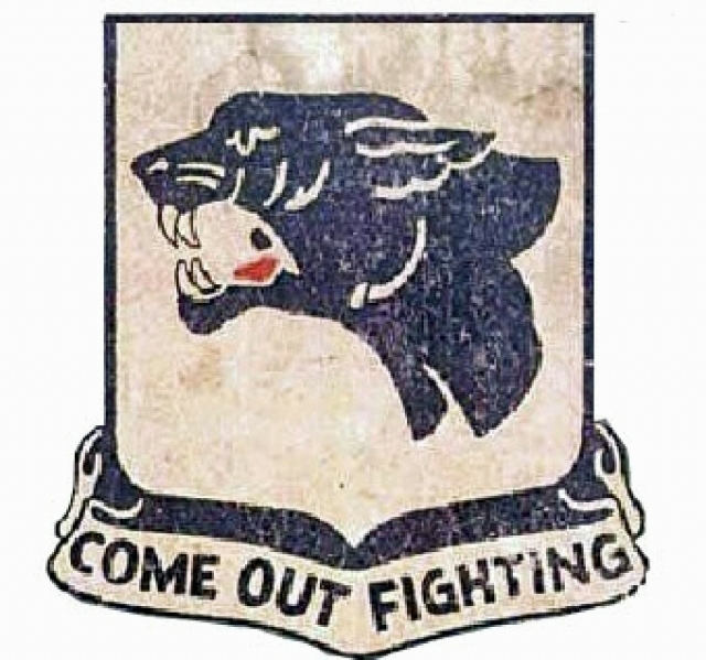761st Tank Battalion: The Black Panthers — AncestralFindings.com